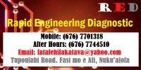 Rapid Engineering Diagnostic